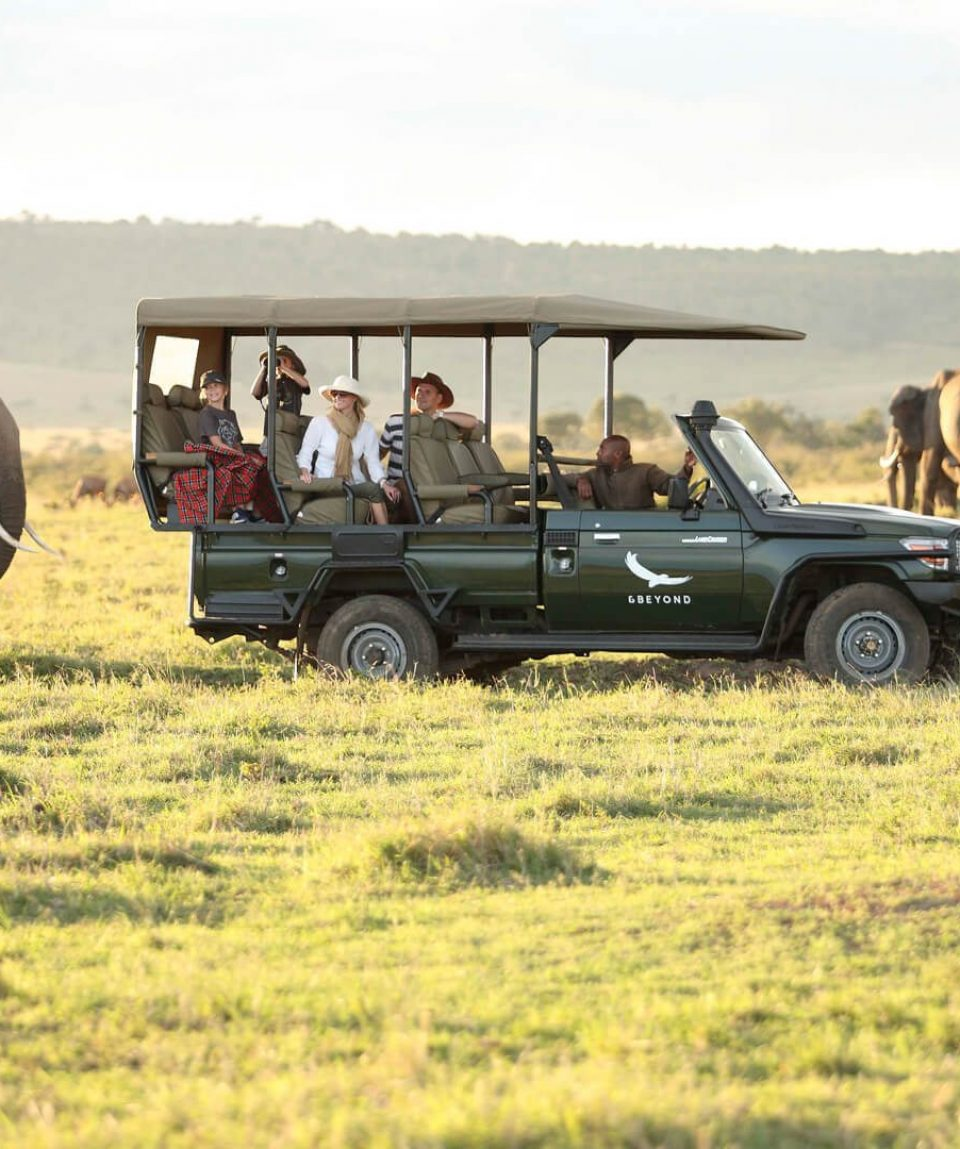 elephants-on-a-game-drive-in-the-masai-mara